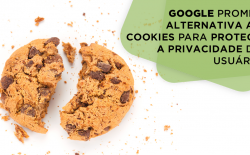 Google e alternativa aos cookies